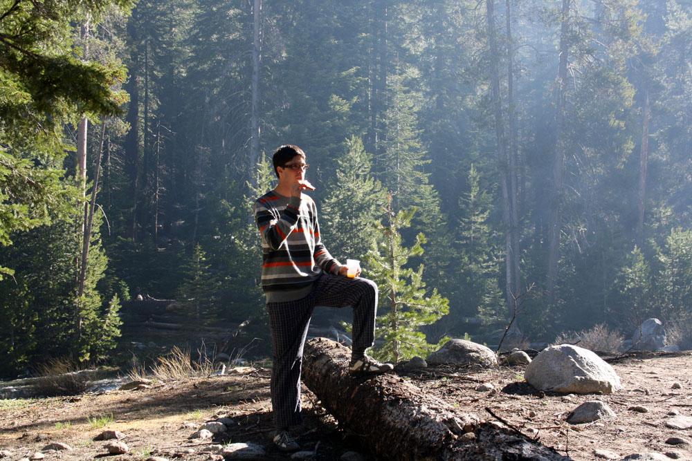 Foto del Camping de Sequoia