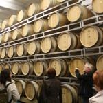 vinos de Maribor