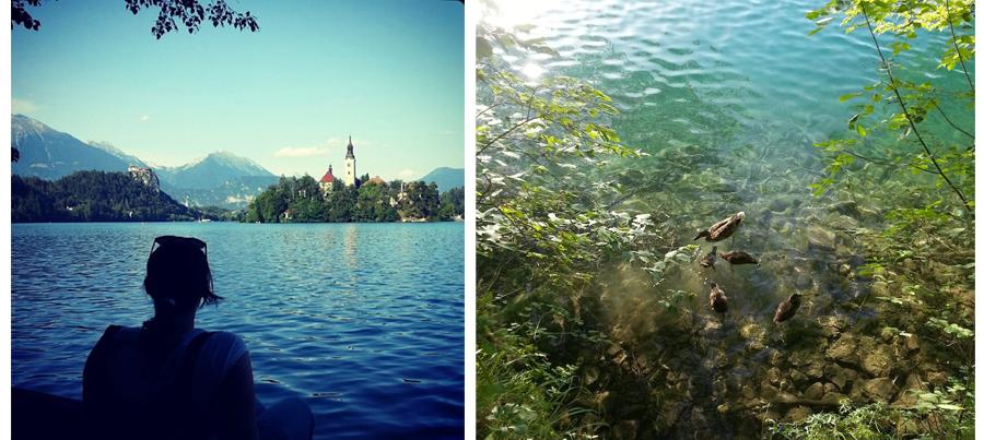 curiosidades del lago de bled