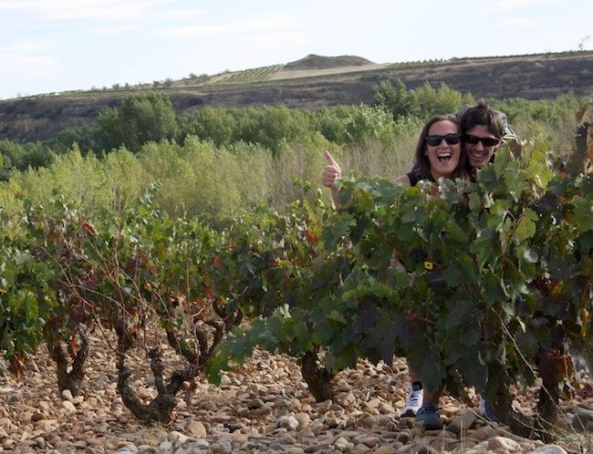 escondidos entre viñedos