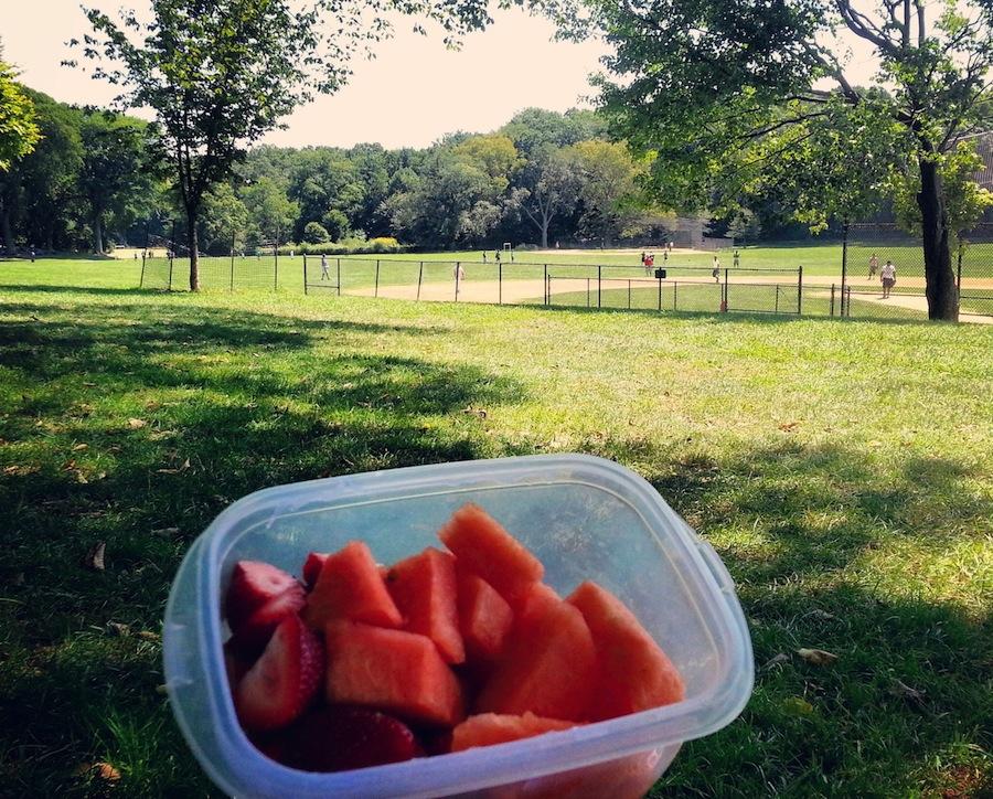 picnic prospect park
